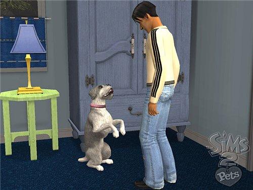http://sims-2.ucoz.ru/Pets/Screenshot-164.jpg